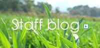 青汁会社のスタッフブログ